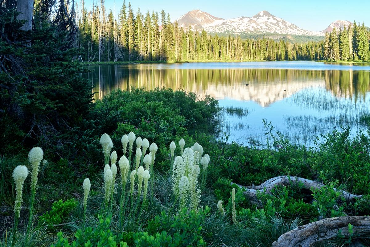Landscape & Nature Images